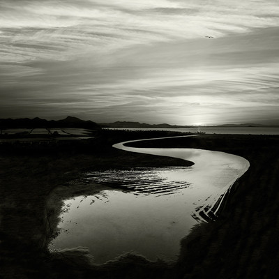 Andy Sotiriou | Water series 06